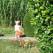 слънчев ден на двора на Вила Бини